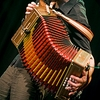 luthier accordeon